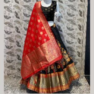 Banarasi Brocade Lehenga With Paded Blouse & Dupatta (Red & Dark Blue)