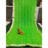 Chiffon Gotta Border Beautiful Colorful Saree By Rajasthan Collection (Green) (3)