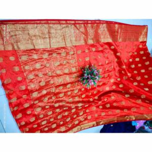 Dola Silk Saree By Rajasthan Collection (Red) (3)